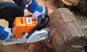 Training in Chainsaw use, Stihl MS460